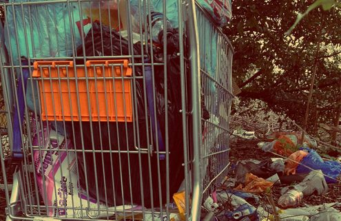Autumn Uncovers Illegal Dump Sites