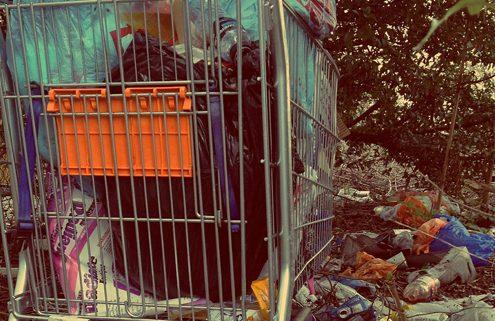 Autumn Uncovers Illegal Dump Sites